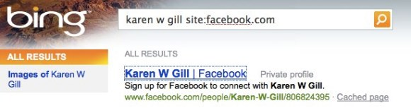 Successful Facebook Search Via Bing