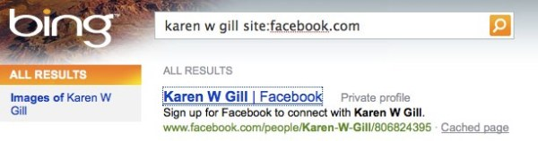 Successful Facebook Search Via Bing
