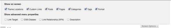 wordpress screen options