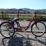 Best Tricycles for Heavy People in 2017 To Look For