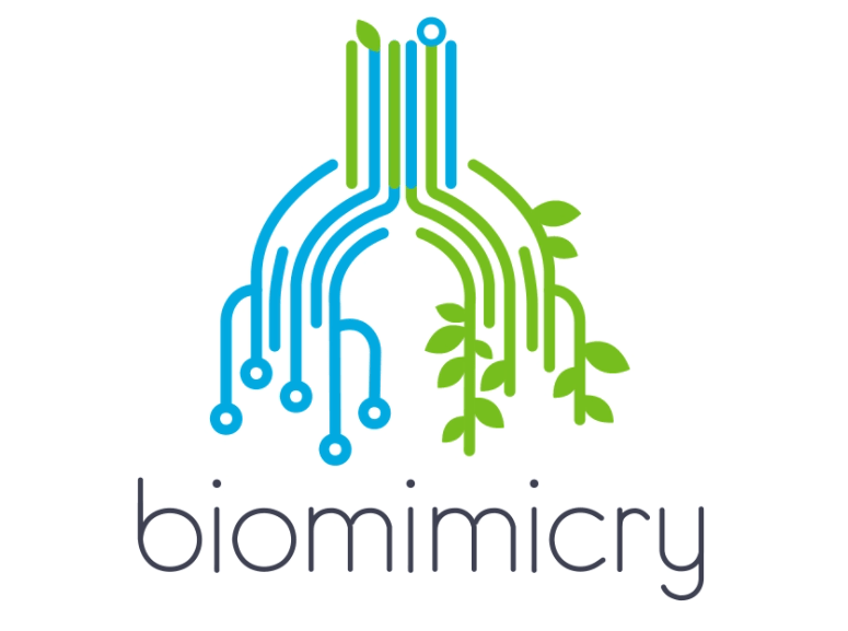 Biomimicry - Motion Graphic Video