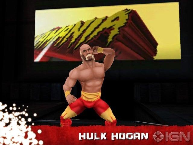 Hulk hogan clearwater-8504