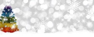 Mundschutz passend zu Weihnachten