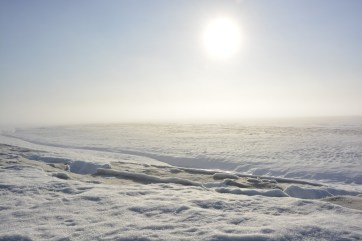 Fog rolling in from the coast at the Milne Ice Shelf camp site.