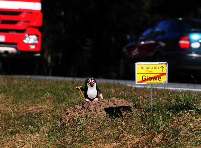 Wittow, Rügens letzte maulwurffreie Zone