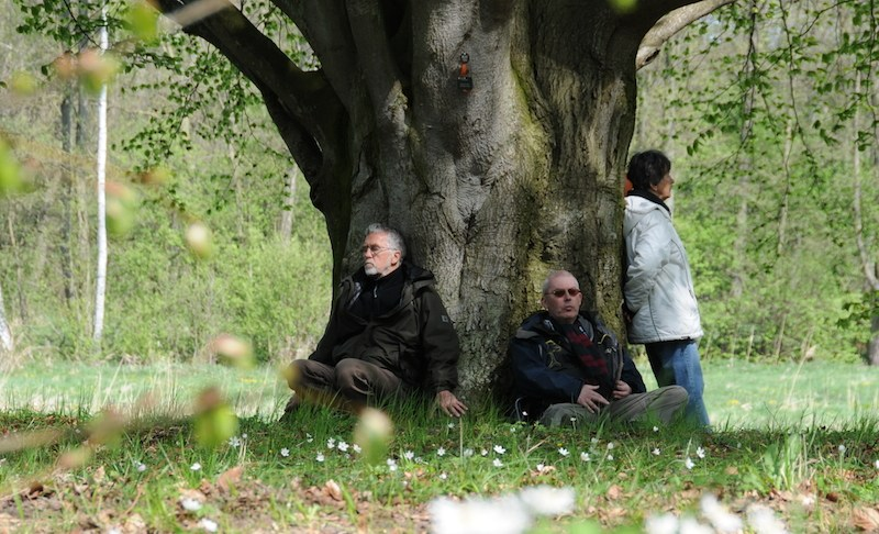 Der mit den Bäumen spricht. . .