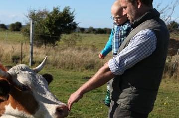 Eigene Insel, glückliche Kühe  – Zu Besuch bei Familie Schilling