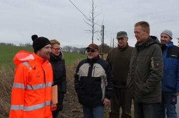 45 neue Alleebäume im Biosphärenreservat Südost-Rügen