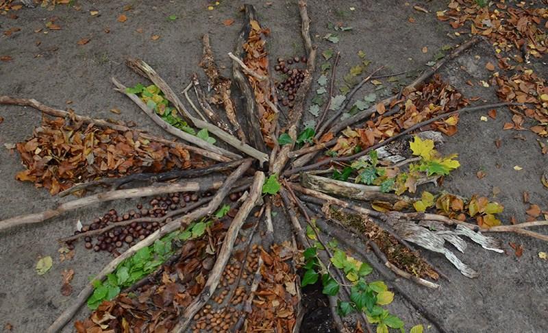 Wälder entdecken und Herbst-Mandalas legen