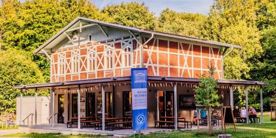Wanderschuh im Buchenwald: Das UNESCO-Welterbeforum auf Jasmund