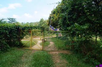 Ein Tor. Nicht, dass wir Nachbarn hätten. Aber wichtig ist: ein Tor.