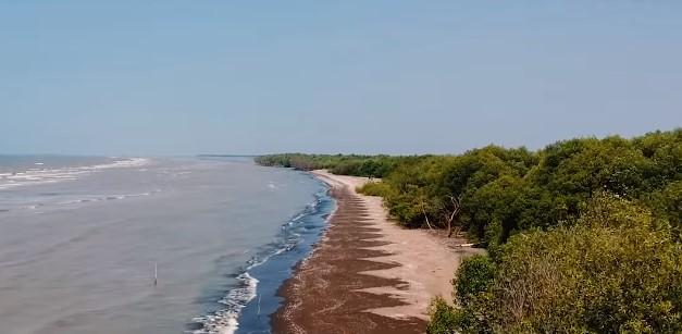 Wisata di Bekasi Pantai Muara Beting
