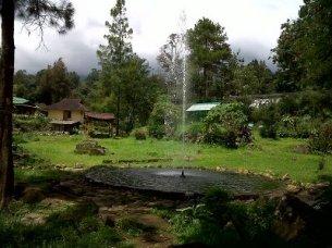 Air Manjur Kolam mandalawangi cibodas