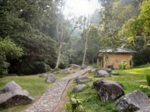 Aneka Tumbuhan Kebun Raya Cibodas