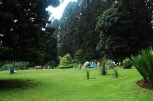 Taman Indah Kebun Raya Cibodas