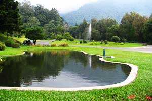 Danau Kebun Raya Cibodas
