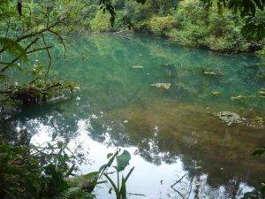 Danau Biru Gede Pangrango