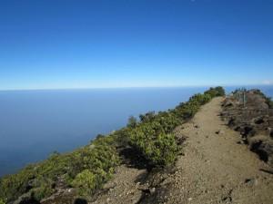 Jalan di Puncak Gunung Gede