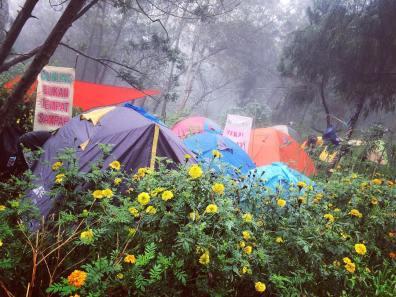 camping di Wana Wisata Petak Sembilan via menggala27
