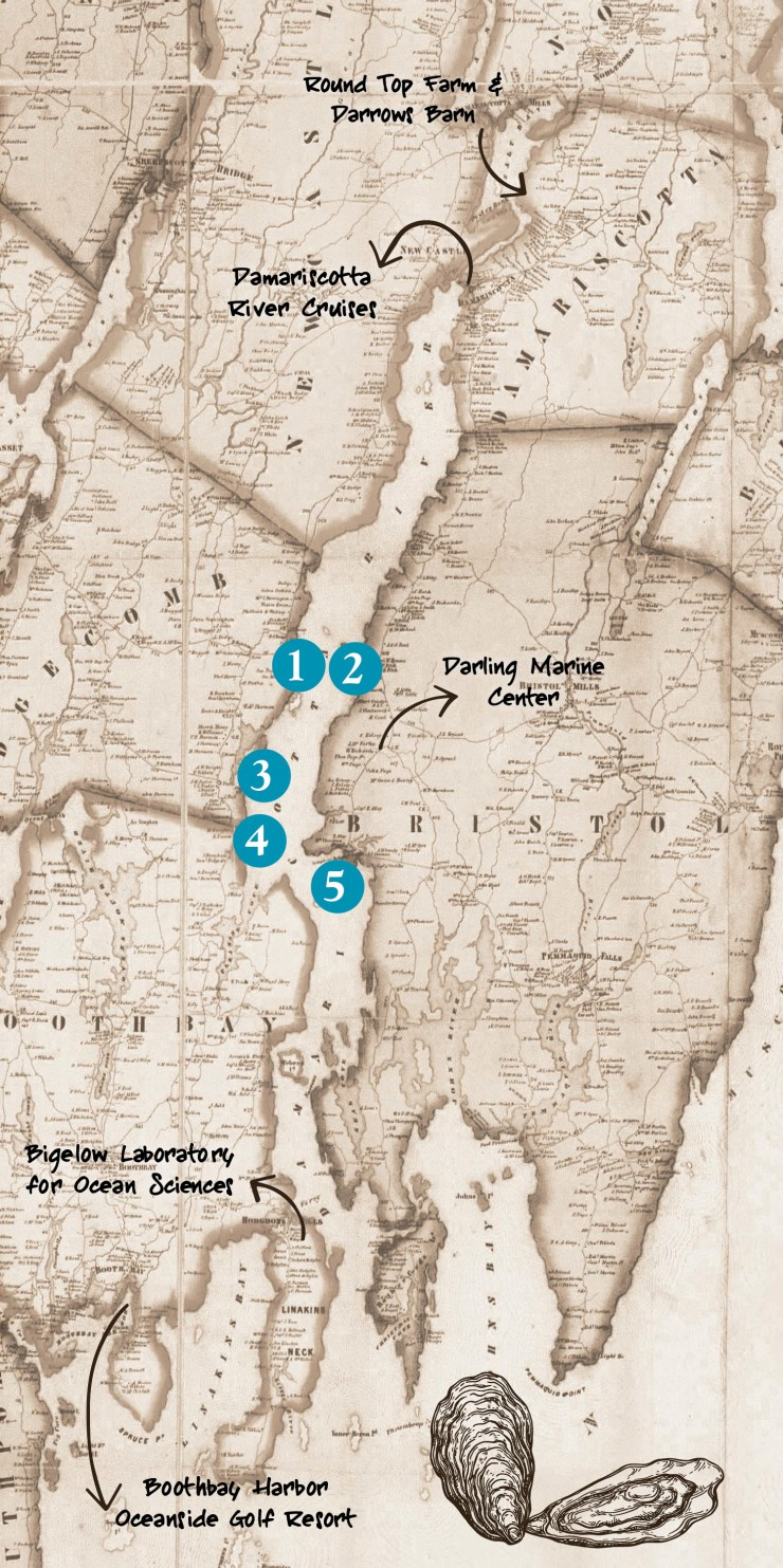 Map of the event locations for the Damariscotta Oyster Celebration