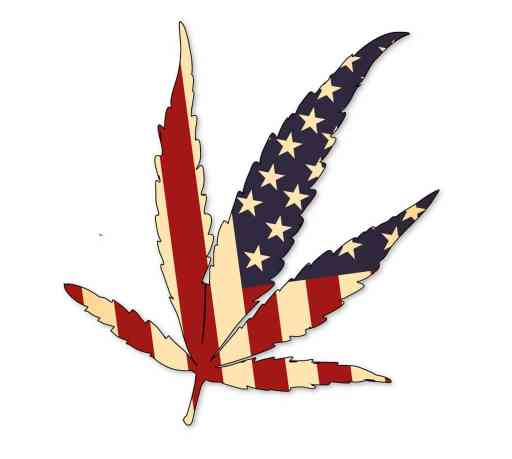 history of cannabis in the united states