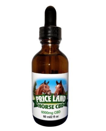 cbd for horses 6000mg