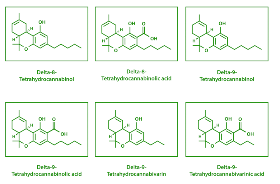 thc isomers