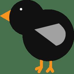 Wisconsin Magpie