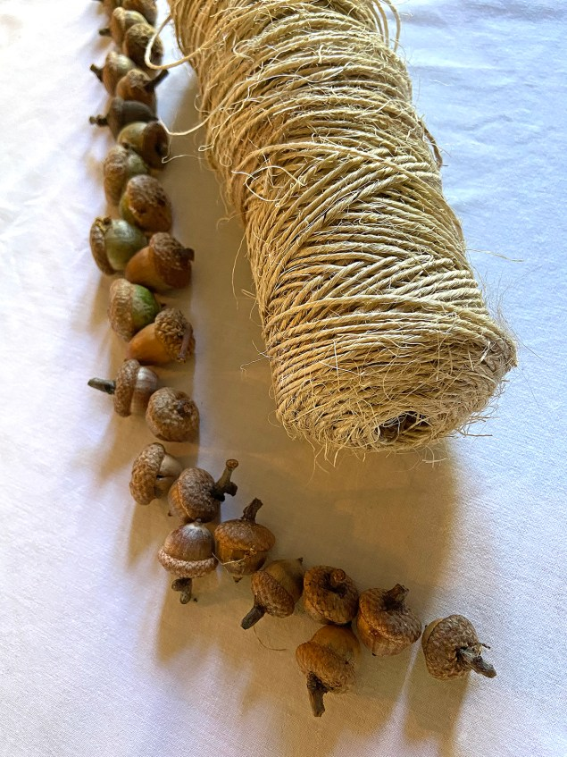line of acorns next to a roll of jute twine