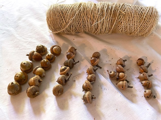 acorns with holes drilled in them, to be used in acorn garland