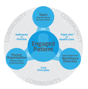 patient-centered team-based care model