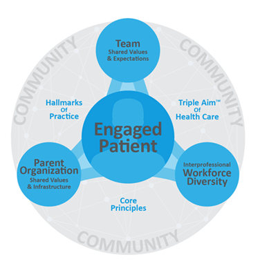patient-centered team-based care model