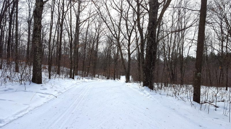 Nine Mile Forest Cross Country Skiing