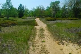 Trail through Dunes