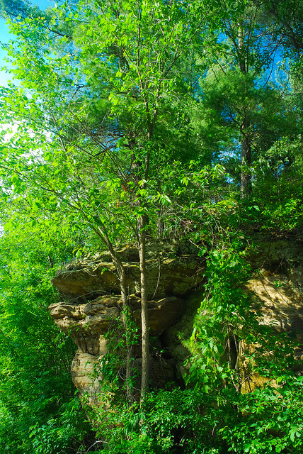 Sandstone Outcropping