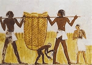 digital history of Egypt peasants