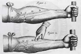 digital history of the Scientific Revolution | medicine