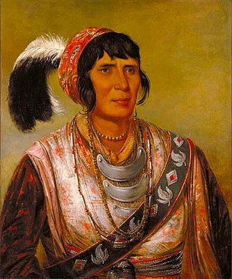 digital history of America 1815-1830 | Indian removal | Seminole tribe
