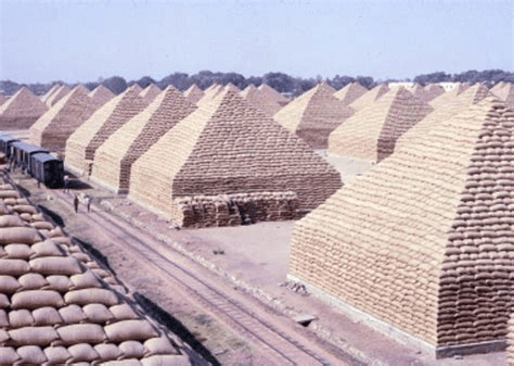 digital history of early Africa | Kano