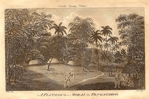 digital history of the Pacific islands