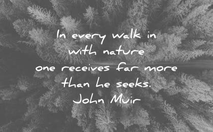 Image result for Quotes about nature