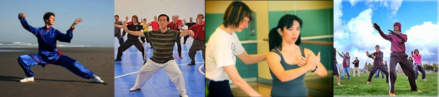 Seattle School of Yang and Chen Taijiquan and Qigong - Wise Orchid Martial Arts