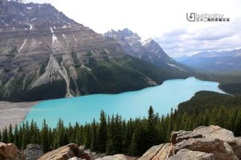 加拿大|Peyto Lake沛托湖.Tiffany藍絕美夢幻冰河湖