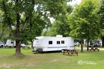 加拿大露營   灰熊鎮市區營地。Lamplighter Campground