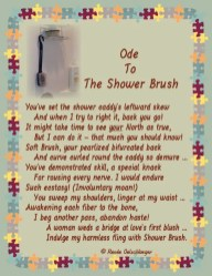 ode, wedding a bridge, shower caddy, marriage, shower brush, light verse, sonnet, poetry, poem