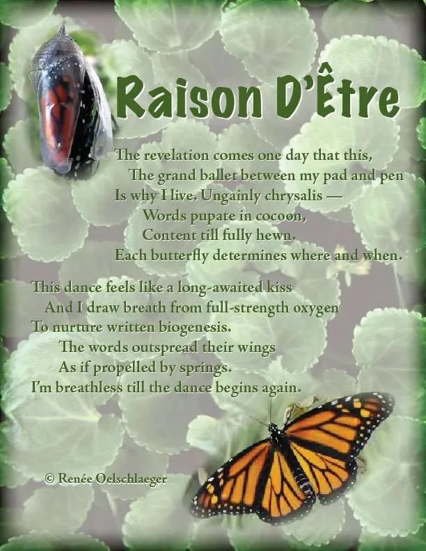 Raison-D-Etre, life's meaning, writing, poetry, verse, poem