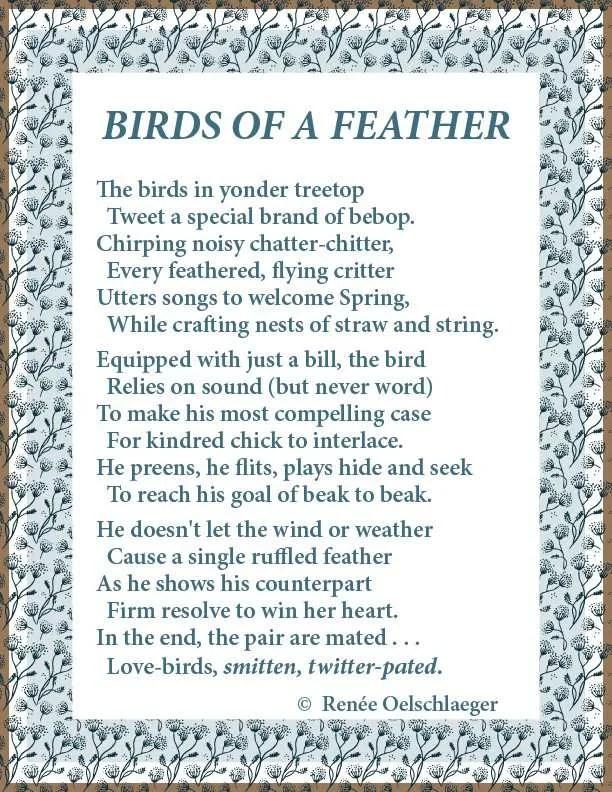 Birds-Of-A-Feather, birds, bird-watching, light verse, poetry, poem