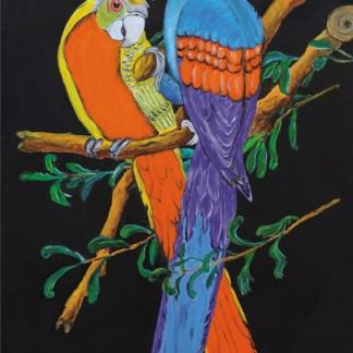 quadro pappagalli messicani