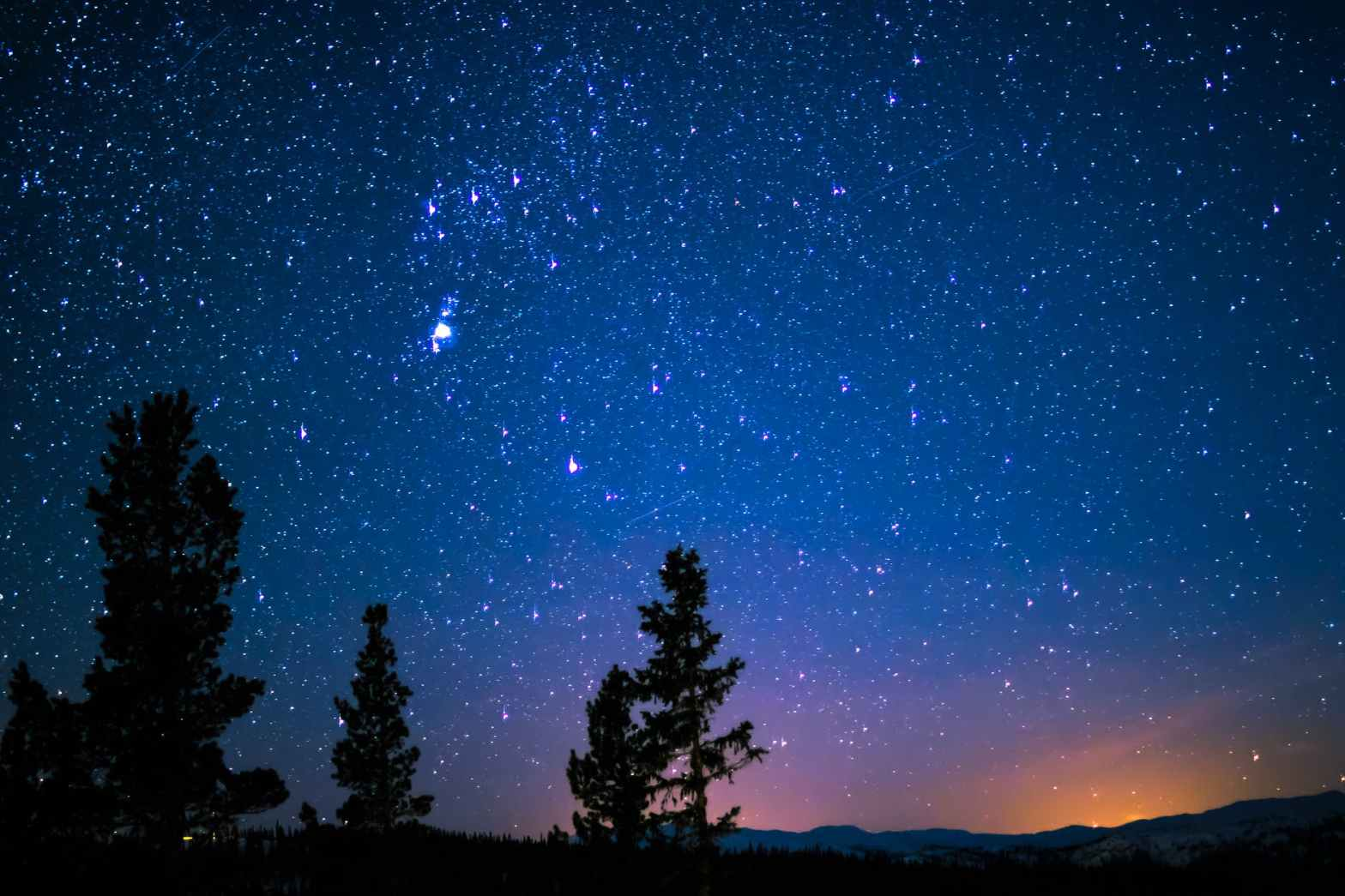 silhouette of trees and mountain under blue starry sky