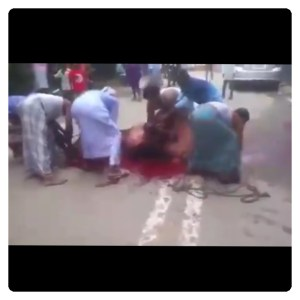 Man Nearly Get Killed While Trying To Kill A Cow (Video)